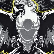 eagle2.0_upclose